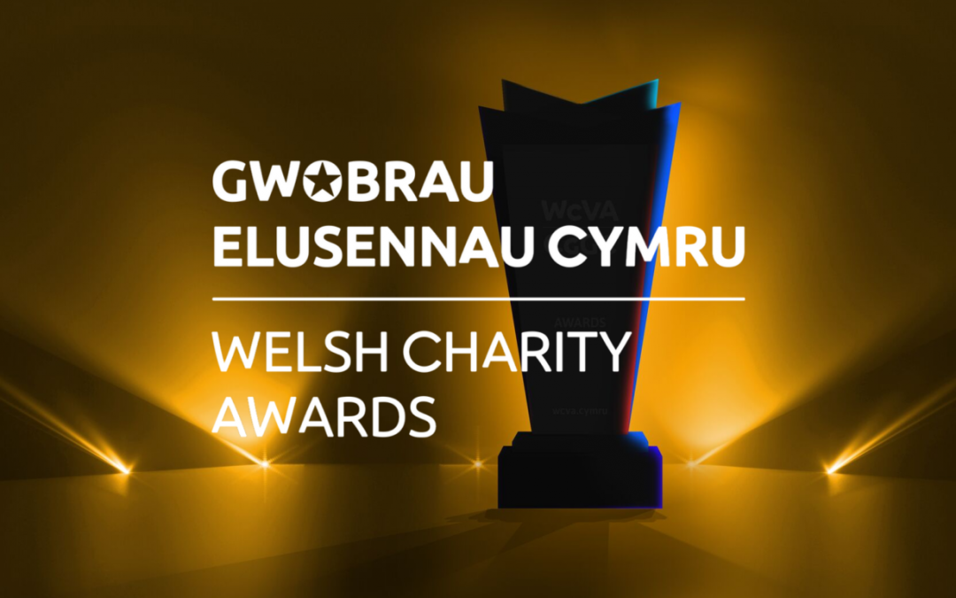 Welsh Charity Awards 2019 – finalist